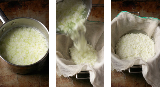 how to make ricotta at home - kitchen ecosystem